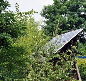 Solarmodule einer PV Inselanlage umgeben von Büschen und Bäumen